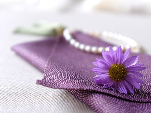 袱紗と菊の花