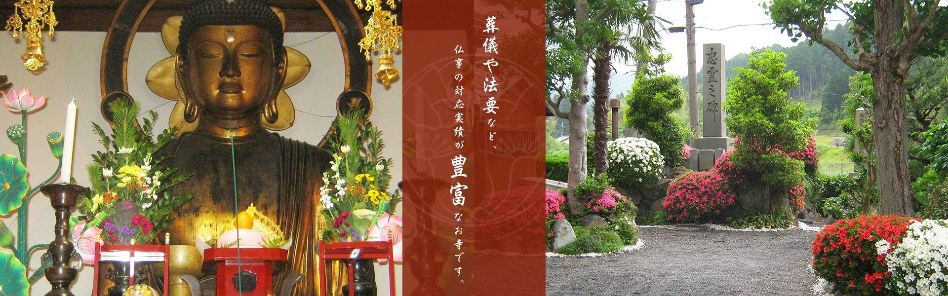 葬儀や法要など、仏事の対応実績が豊富なお寺です。